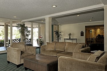Welcoming Lounge and Lobby